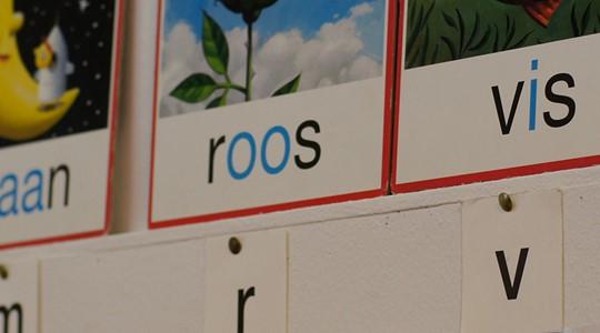 Nederlands Lezen en Schrijven in Innovatieve Scholen (NELSIS)