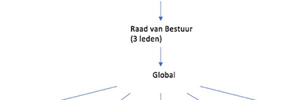Bedrijfsanalyse Koninklijke Vopak N.V.