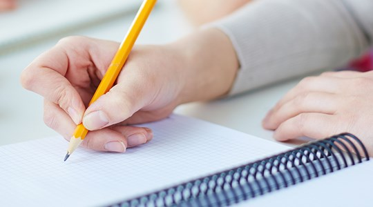 Schrijvend leren en genredidactiek